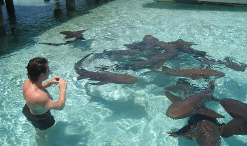 Exuma Cays Tours